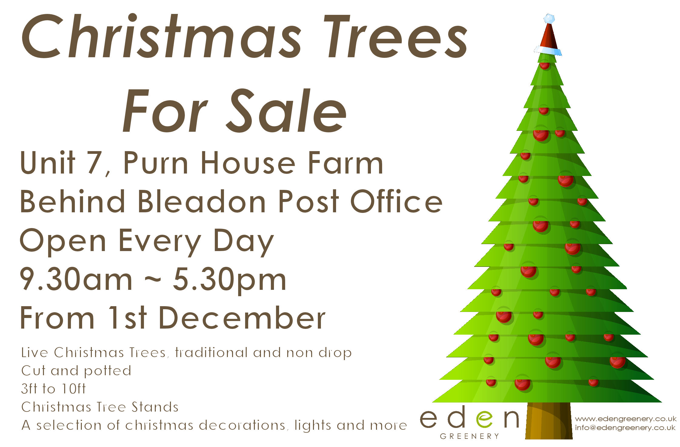 Christmas Trees from 1st December by Eden Greenery