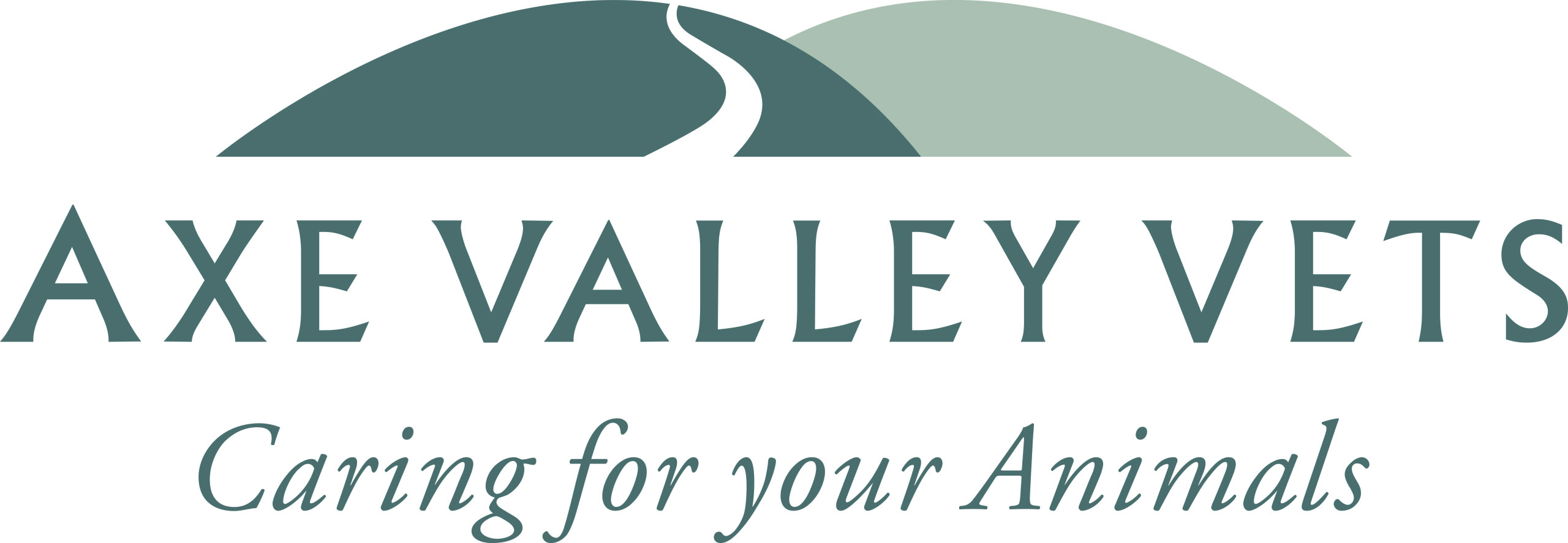 Axe Valley Vets
