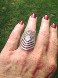 Lost Silver Ring